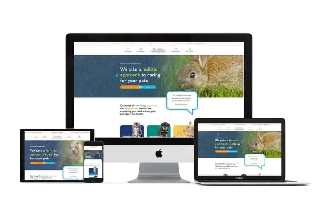 hollies vets web design